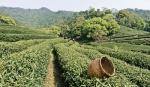 2097960x150 - پاورپوینت کامل و جامع با عنوان تشخیص مسائل و مشکلات بنگاه کشاورزی در 41 اسلاید